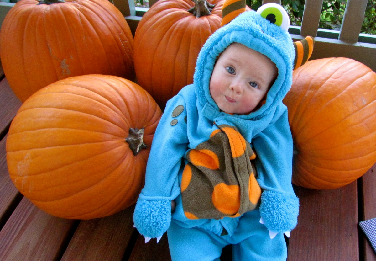 Top Ten Houston Halloween Events for Babies, Toddlers and Families ...