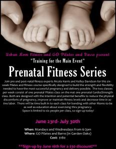 Prenatal Flyer